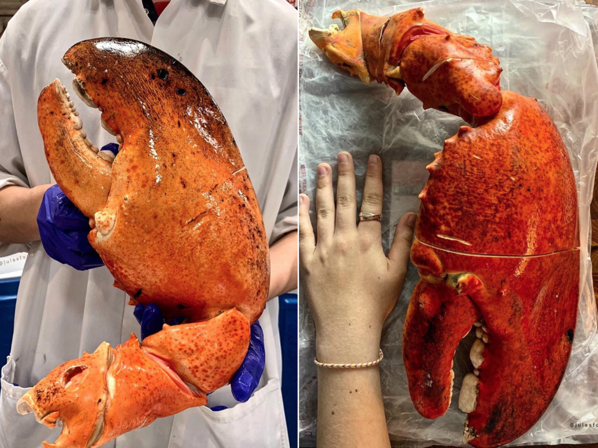 Costco Is Selling 3-Pound Lobster Claws